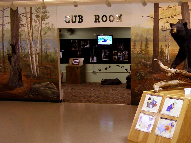 cub_room.jpg