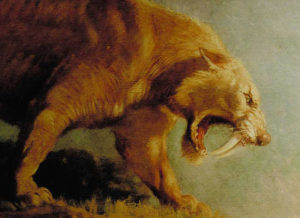 sabre-toothed_cat.jpg