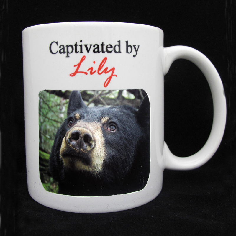 Captivated by Lily Mug