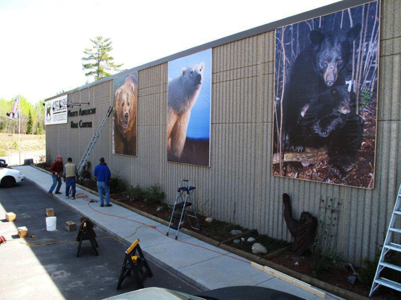 New pics for the Bear Center building!