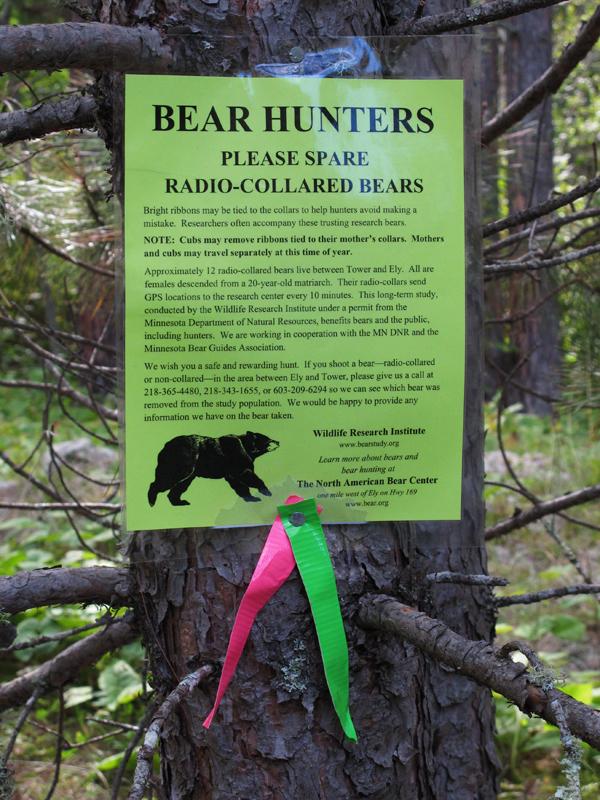 Bear Hunter Sign