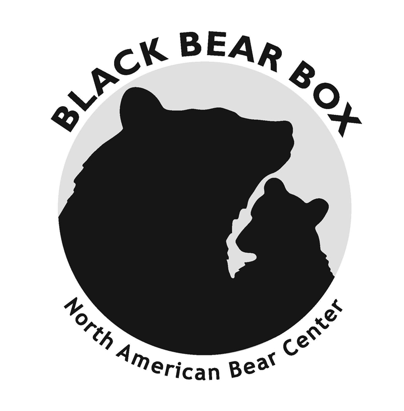 Bear Box logo