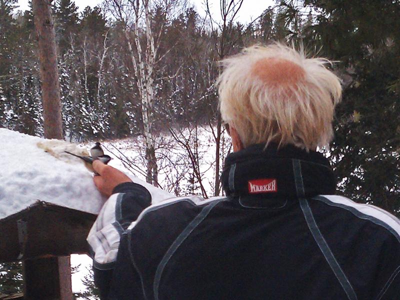 Lynn_Rogers_feeding_birds_-_20101122