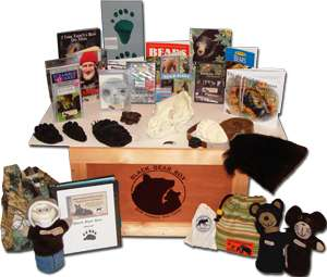 bearbox_contents