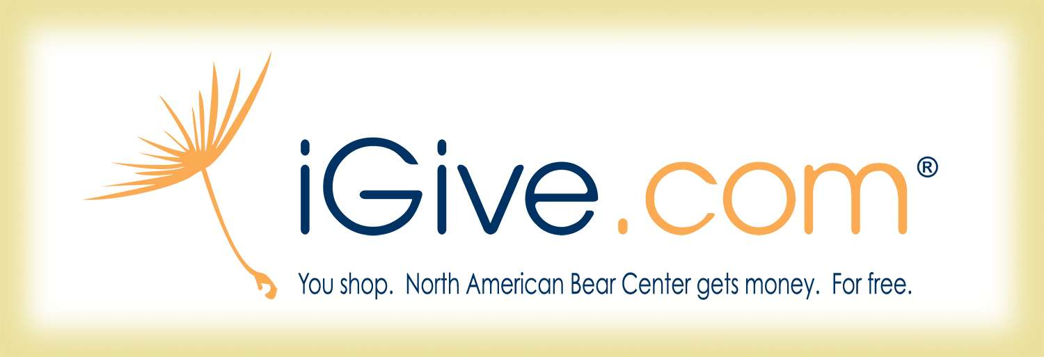 iGive banner