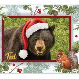 Ted Santa Hat Holiday Card