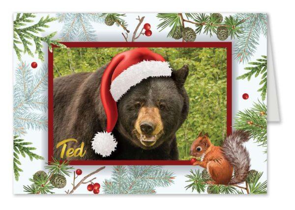 Ted Santa Hat Holiday Card