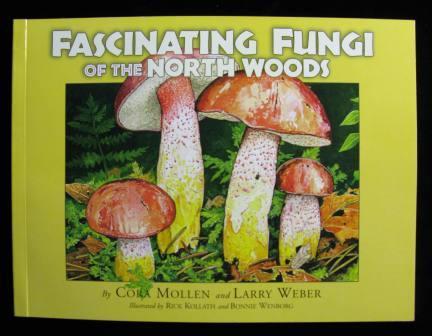 Fungi of the Northwoods