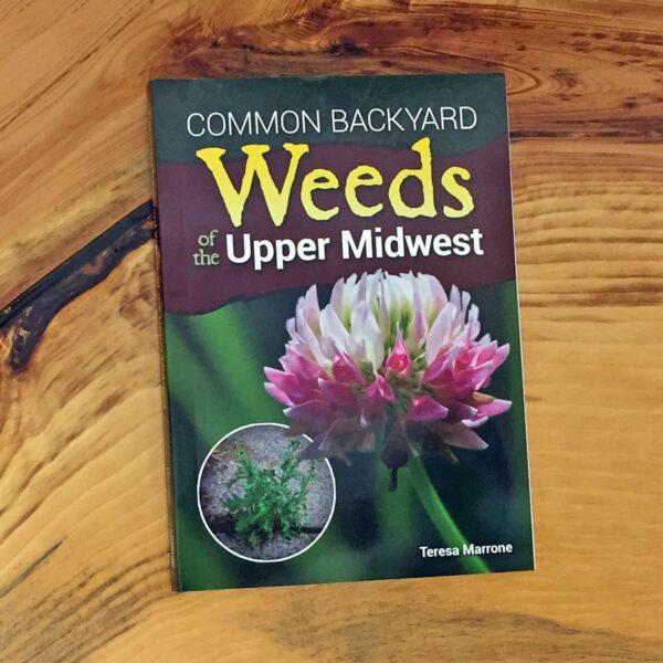Common Backyard Weeds