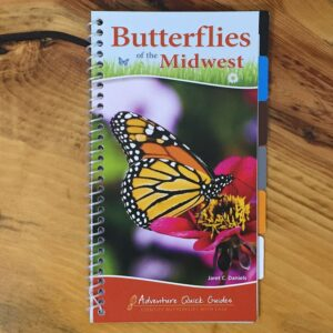Butterflies of the Midwest