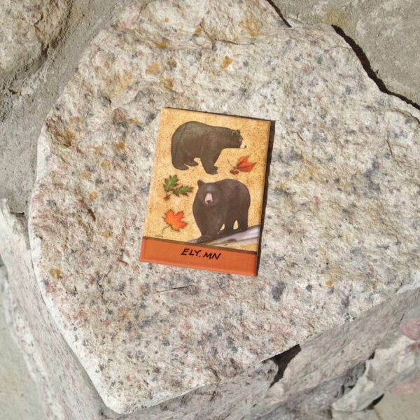 Bear Collage Magnet
