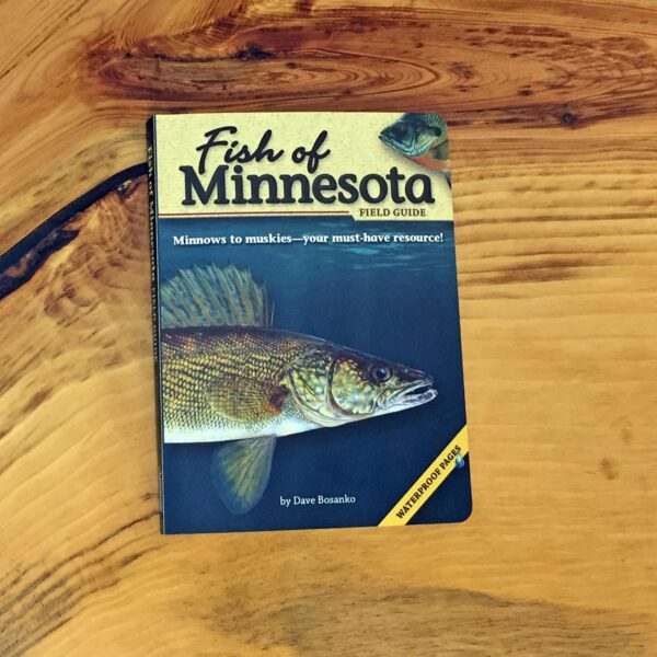 Fish of MN Field Guide
