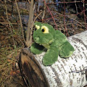 Frolick Frog
