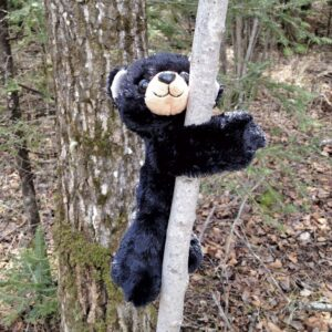 Huggers Black Bear