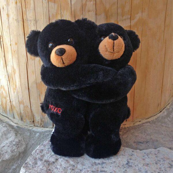 Hugging Black Bear