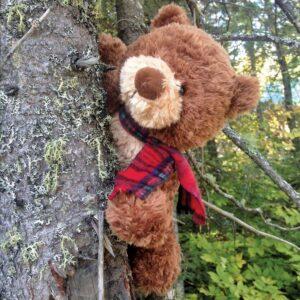 Briar Bear