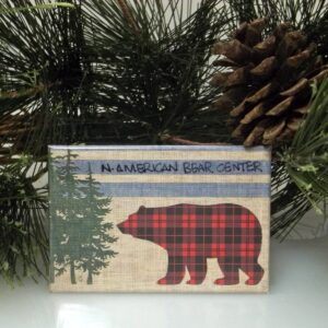 Plaid Bear Magnet