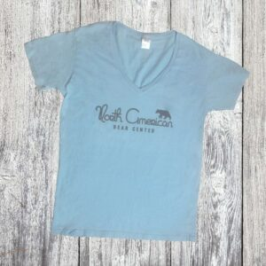 Ladies Sky Blue Vneck