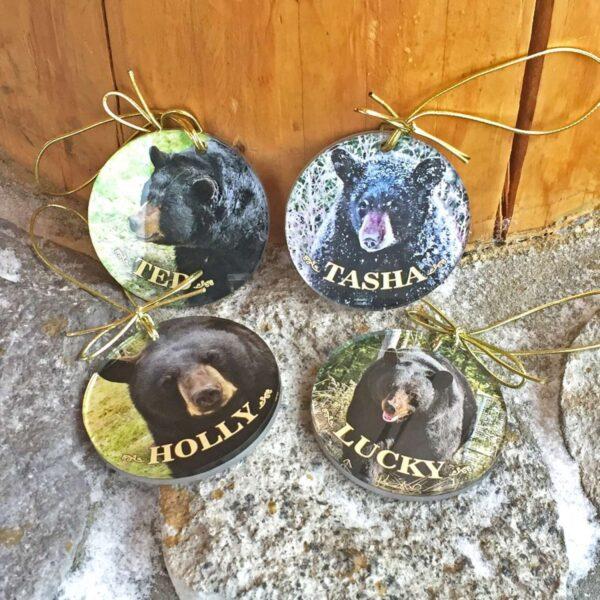 Acrylic Ornament (choice of bear)