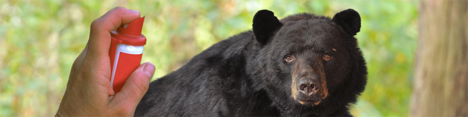 Does Pepper Spray Make Bears Mad? - North American Bear