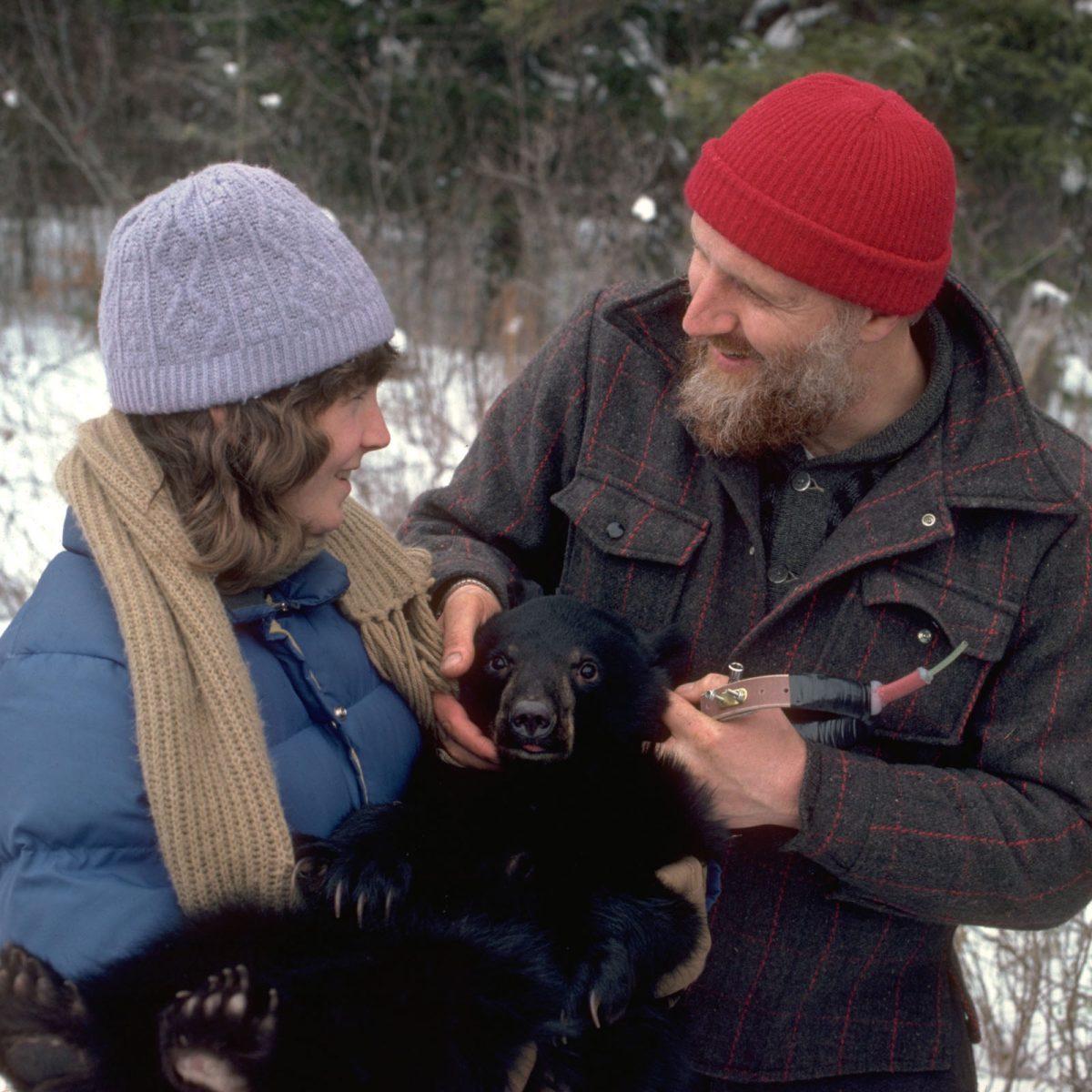 31b4ef9b269 Our Founder - Dr. Lynn Rogers PhD - North American Bear CenterNorth ...