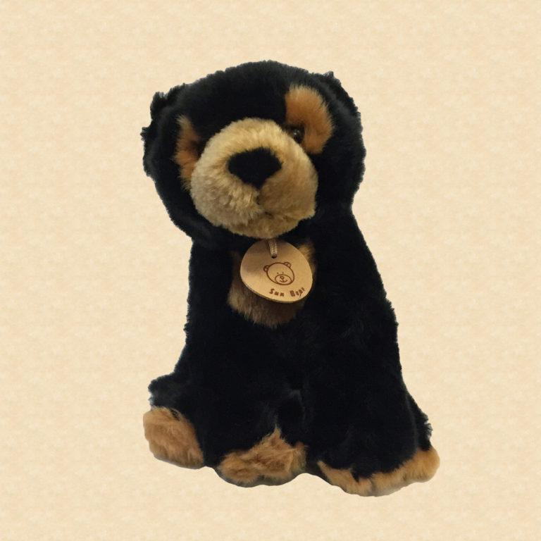 Sun Bear 9″