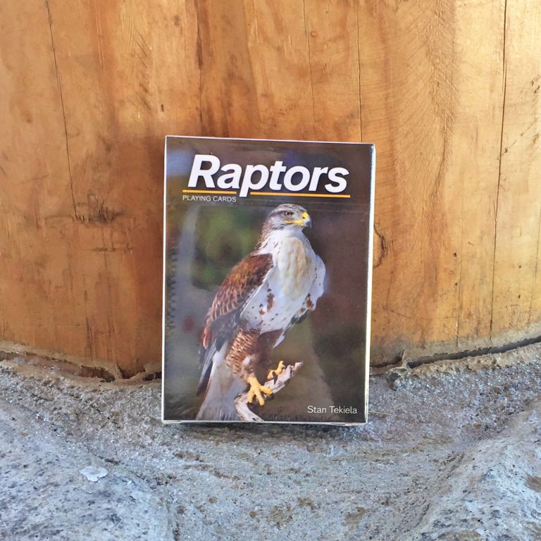 Raptor Playing Cards
