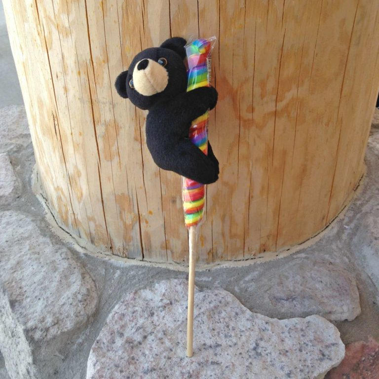 Black Bear with Candy Lollipop
