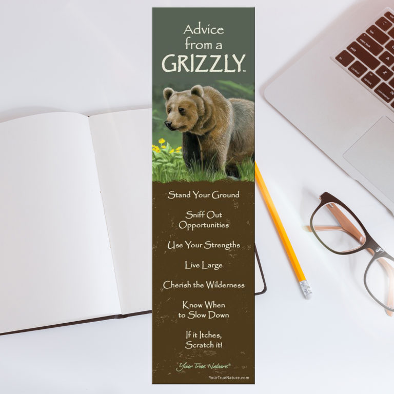 Bookmark: Advice From A Grizzly