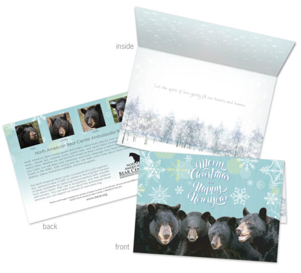 2019 Holiday Cards
