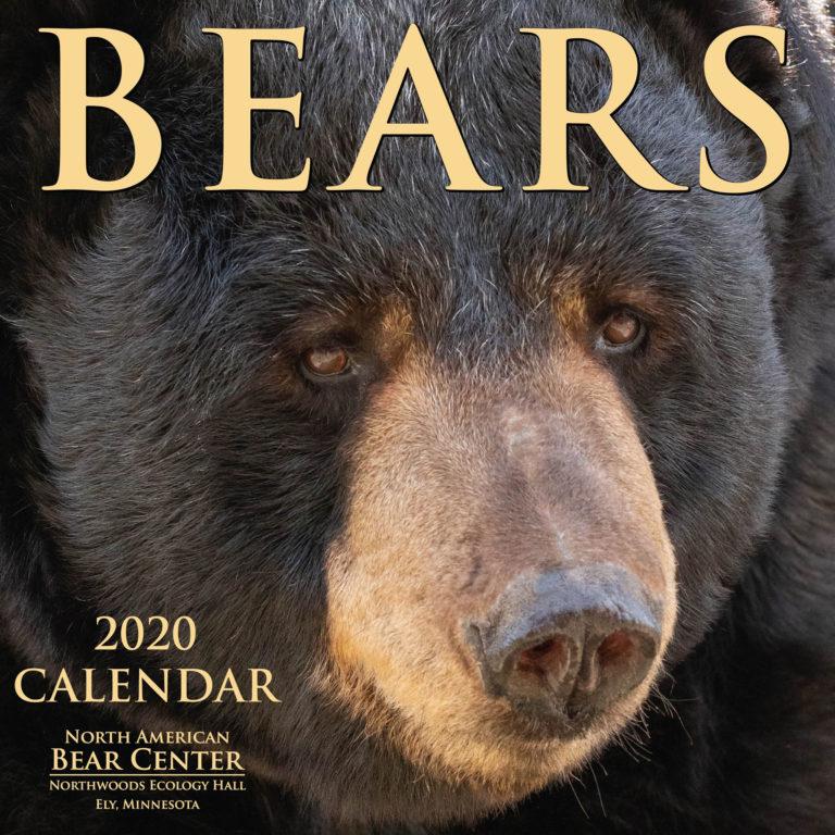2020 Bear Center Calendar